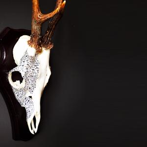 Crystallized Skull