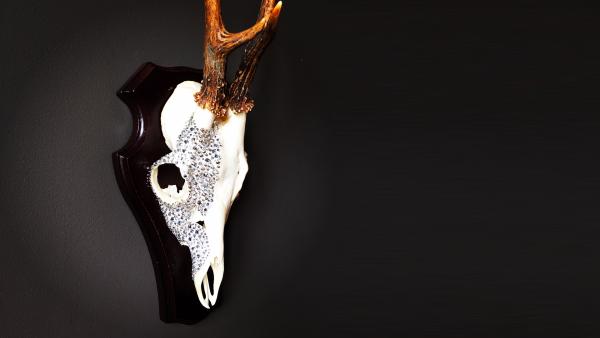 Swarovski Crystallized skull by Crystal World Amsterdam